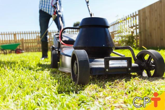 Em que altura devo cortar a grama?   Artigos Cursos CPT