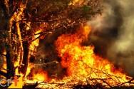 Como a umidade relativa do ar influencia o fogo em queimadas?