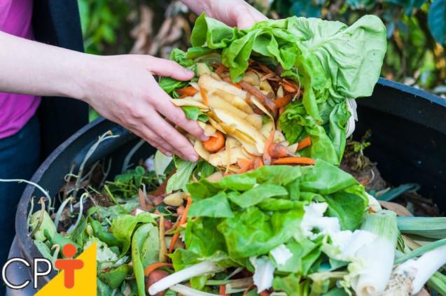 Compostagem do Lixo Orgânico: saiba mais sobre o assunto   Artigos Cursos CPT