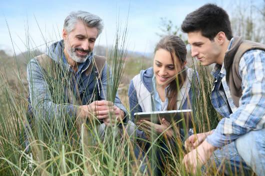 Como otimizar a gestão da propriedade rural