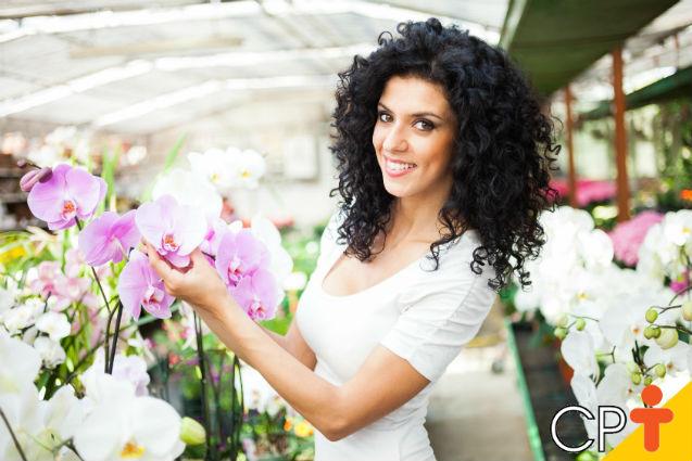 Podridão Negra: como combatê-la em orquídeas?   Dicas Cursos CPT