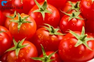 O cultivo de tomate no Brasil – Custos