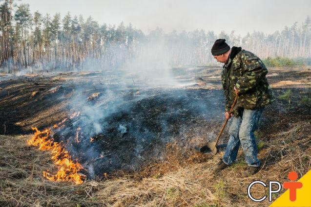 Incêndio florestal e queima controlada: qual a diferença?   Artigos Cursos CPT