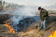 Incêndio florestal e queima controlada: qual a diferença?