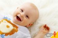 Papinhas caseiras preparadas para bebês podem ser congeladas?