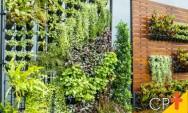 CPT lança o Curso a Distância Jardins Verticais: Implantação e Manutenção