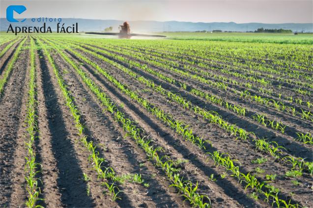Pulverização de Herbicida em Plantações