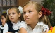 Por que implantar jardins verticais em escolas?
