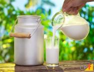 Os leites enriquecidos