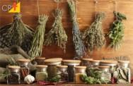Conheça melhor as ervas e especiarias