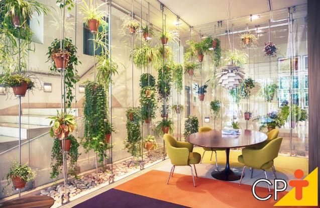 Por que implantar um jardim vertical em minha empresa?   Artigos Cursos CPT