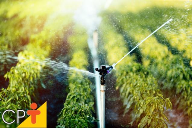 Solos saturados são propícios ao desenvolvimento de plantas?   Artigos Cursos CPT