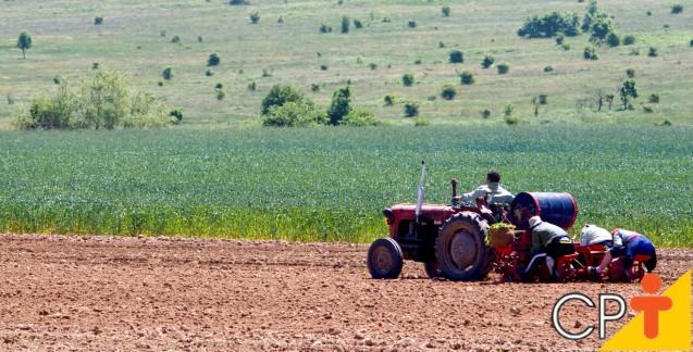 Adubação nitrogenada e fosfatada em Cana-de-açúcar: como fazer   Artigos Cursos CPT