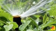 A irrigação e economia de água