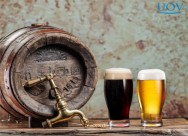 Especial cerveja: Quais os tipos de cervejas artesanais?