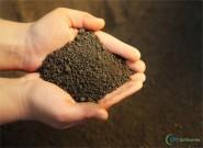 A importância da adubação do solo