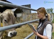 Médicos veterinários têm novo código de ética
