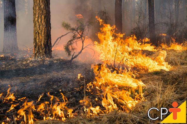Você conhece as três fases da combustão do fogo?   Artigos Cursos CPT