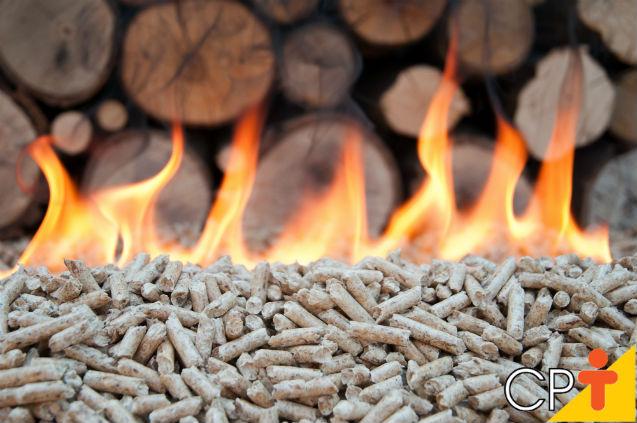 É possível gerar energia elétrica utilizando a biomassa?   Artigos Cursos CPT