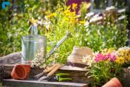 5 dicas para a construção do seu jardim