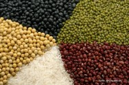 Produção agrícola brasileira dá um salto com o crescimento da demanda