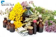 2ª edição do Livro Cultivo Orgânico de Plantas Medicinais
