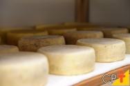 Quer saber um pouco mais sobre o queijo do Serro? Leia!