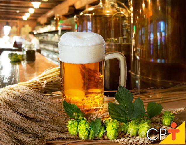 O lúpulo e a cerveja: um casamento que deu certo!   Dicas Cursos CPT