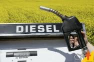 Por que a produção do Biodiesel no Brasil é tão promissora e viável?