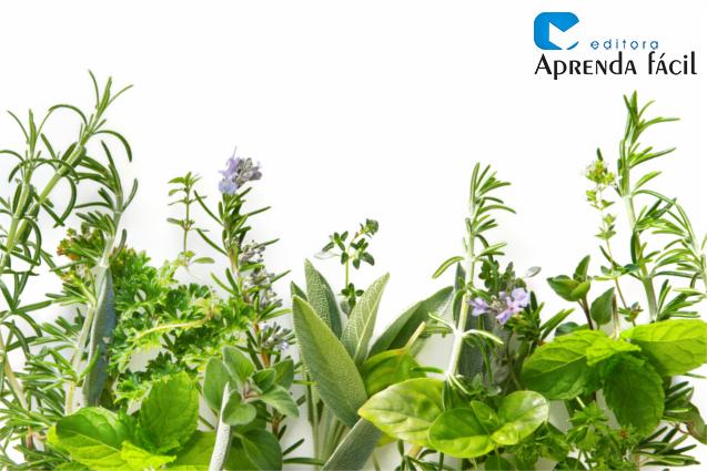 Ervas e plantas medicinais