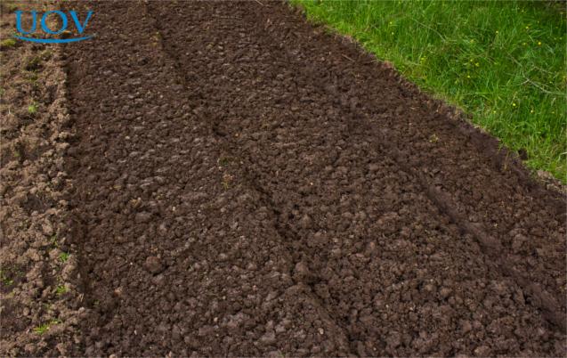 Preparando a terra para cultivo