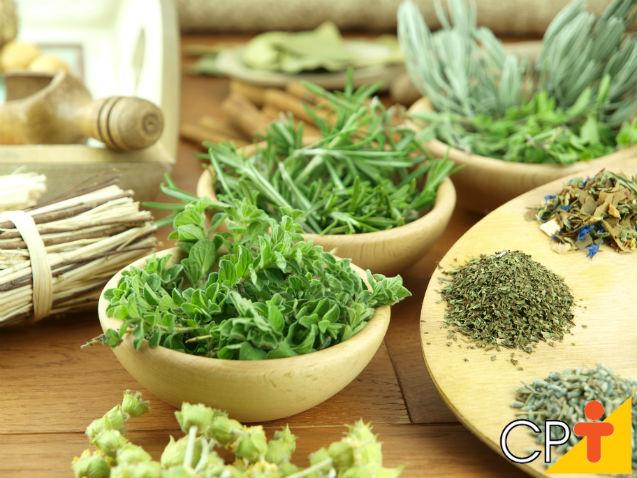 Como armazenar plantas medicinais após a colheita?   Dicas Cursos CPT
