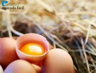 Como ter um ovo com a gema mais alaranjada?