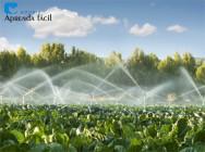 Como funciona o sistema de irrigação por aspersão convencional?