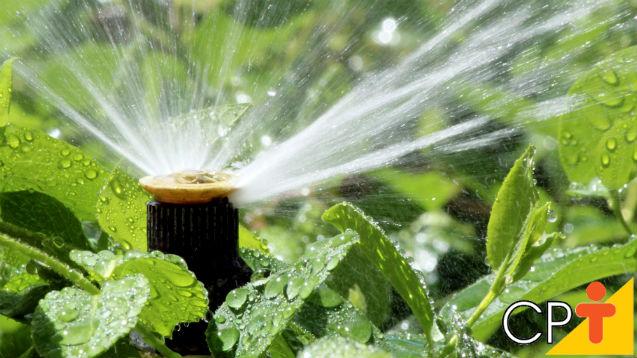 Projeto de Irrigação por Aspersão - o novo Curso a Distância CPT   Notícias Cursos CPT