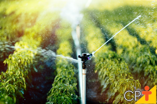 Como funcionam os aspersores de irrigação?   Dicas Cursos CPT