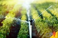 Como funcionam os aspersores de irrigação?