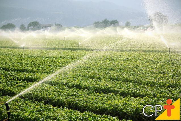 Aspersores de irrigação: saiba tudo sobre eles   Artigos Cursos CPT