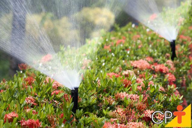Dicas para um projeto de irrigação eficiente   Dicas Cursos CPT