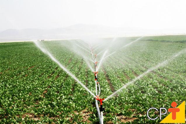 Por que os aspersores são tão importantes para um projeto de irrigação?   Artigos Cursos CPT