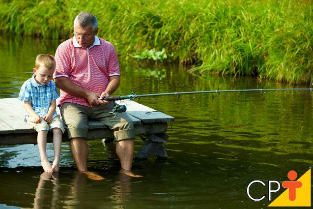 Sistemas extensivos de criação de peixes: saiba mais sobre eles   Artigos Cursos CPT