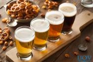 Conheça os diferentes tipos de cerveja e saiba como combiná-los com petiscos