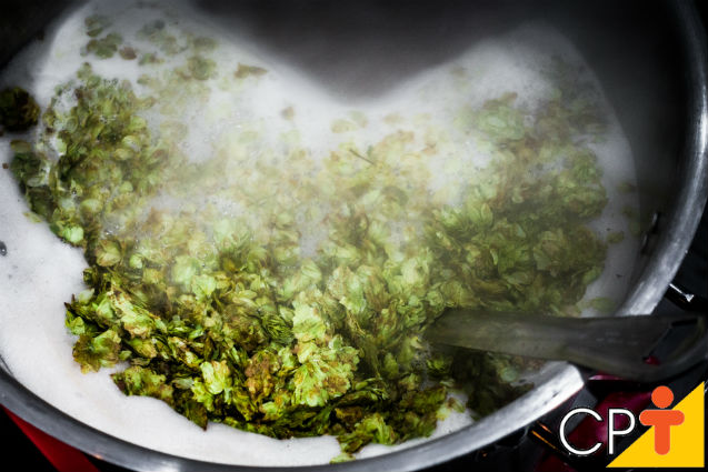 Como os homebrewers cozinham o mostro para fazer cerveja?   Dicas Cursos CPT