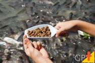 Piscicultor: o peixe é aquilo que ele come!