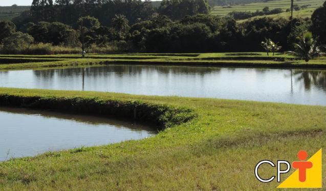 Pisciculturas: como evitar a erosão do solo   Dicas Cursos CPT