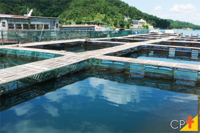 Fazenda de Produção de Peixes
