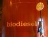 Biodiesel promete crescer 50 porcento em 2010
