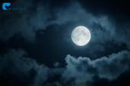Como plantar nas fases da lua