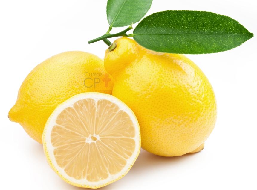 Limão Taiti é uma das espécies de citros de maior precocidade   Notícias CPT