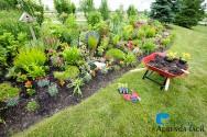 Renovando os jardins na primavera
